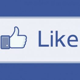WeAllSew is hosting a giveaway each time we hit another 1,000 Facebook Fan Page likes!