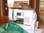 "Rocie Loves His New Healthy Habitat ""Salad Bar""! #bernina #diy #iguana #hatitat #feeding station #pets #weallsew"