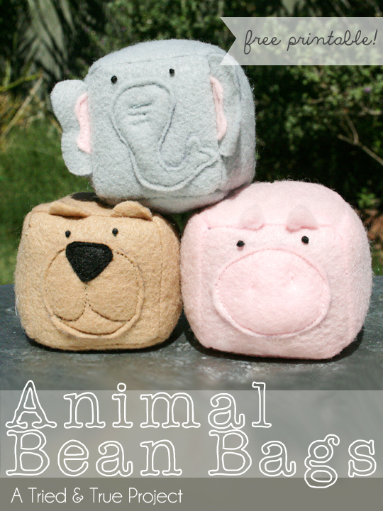 DIY Bean Bag Animals
