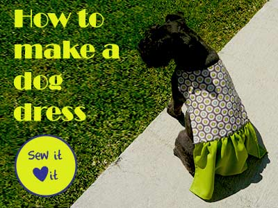 DIY doggie dress