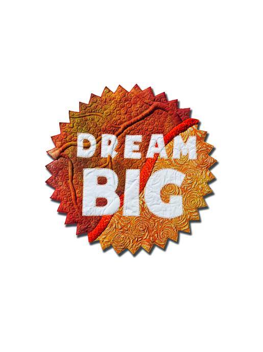 Dream Big with the BERNINA Q24