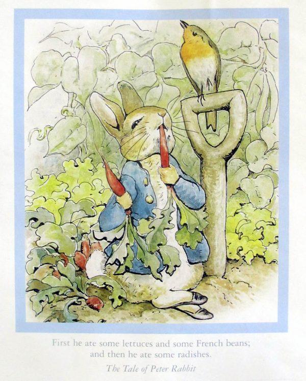 Peter Rabbit calendar page