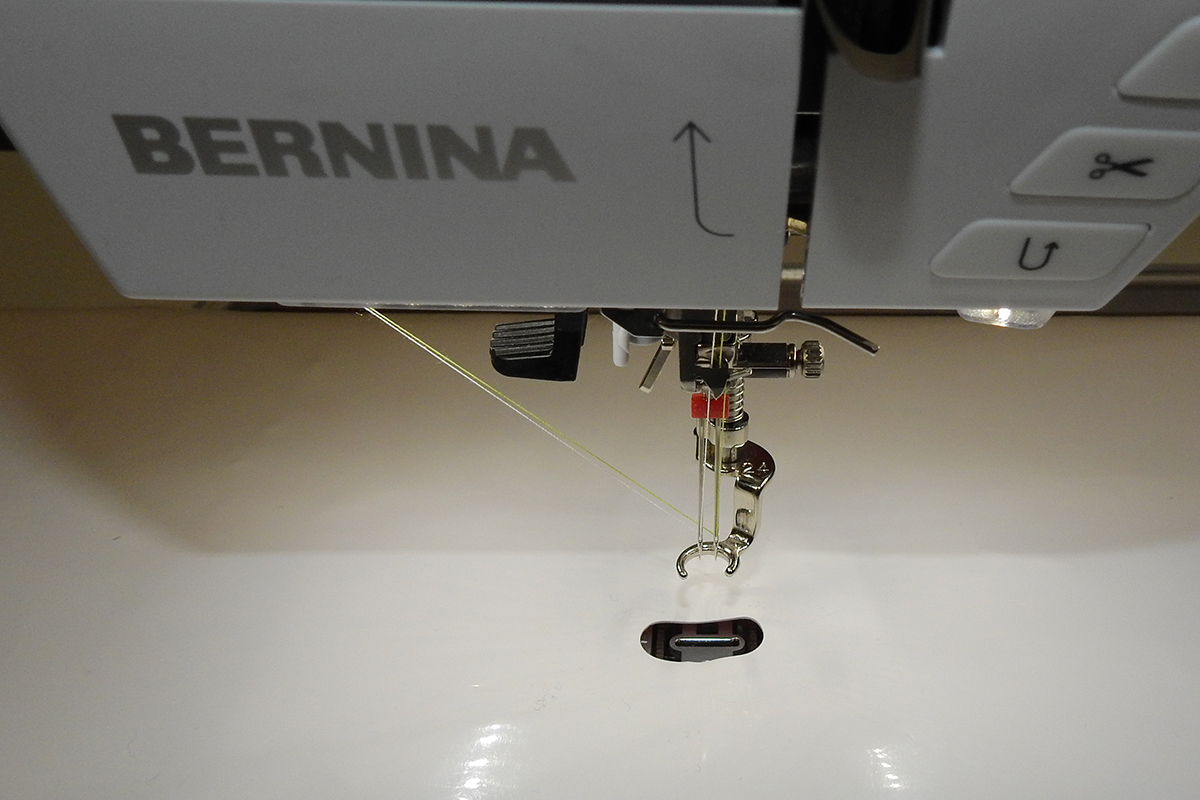Free-Motion Quilting with a Double Needle   WeAllSew : bernina free motion quilting foot - Adamdwight.com