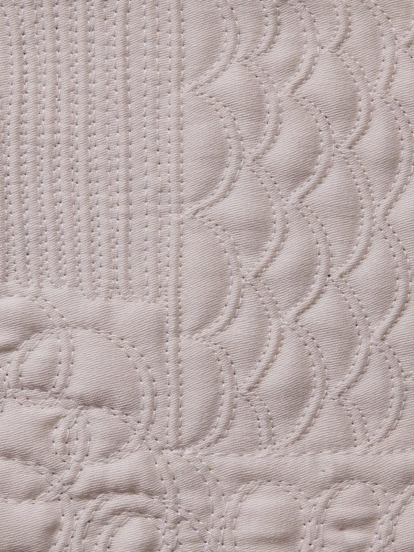 Double Needle Free Motion Quilting low contrast