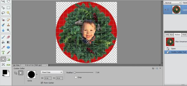 Stitched Photo Ornament-select the circle shape