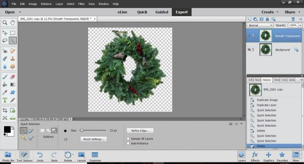 Stitched Photo Ornament-clean up any parts of the background