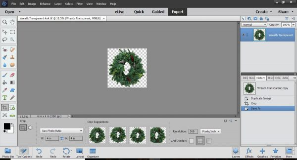 Stitched Photo Ornament-Crop the image to the size that you want