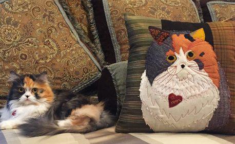 Applique Pillow Tutorial