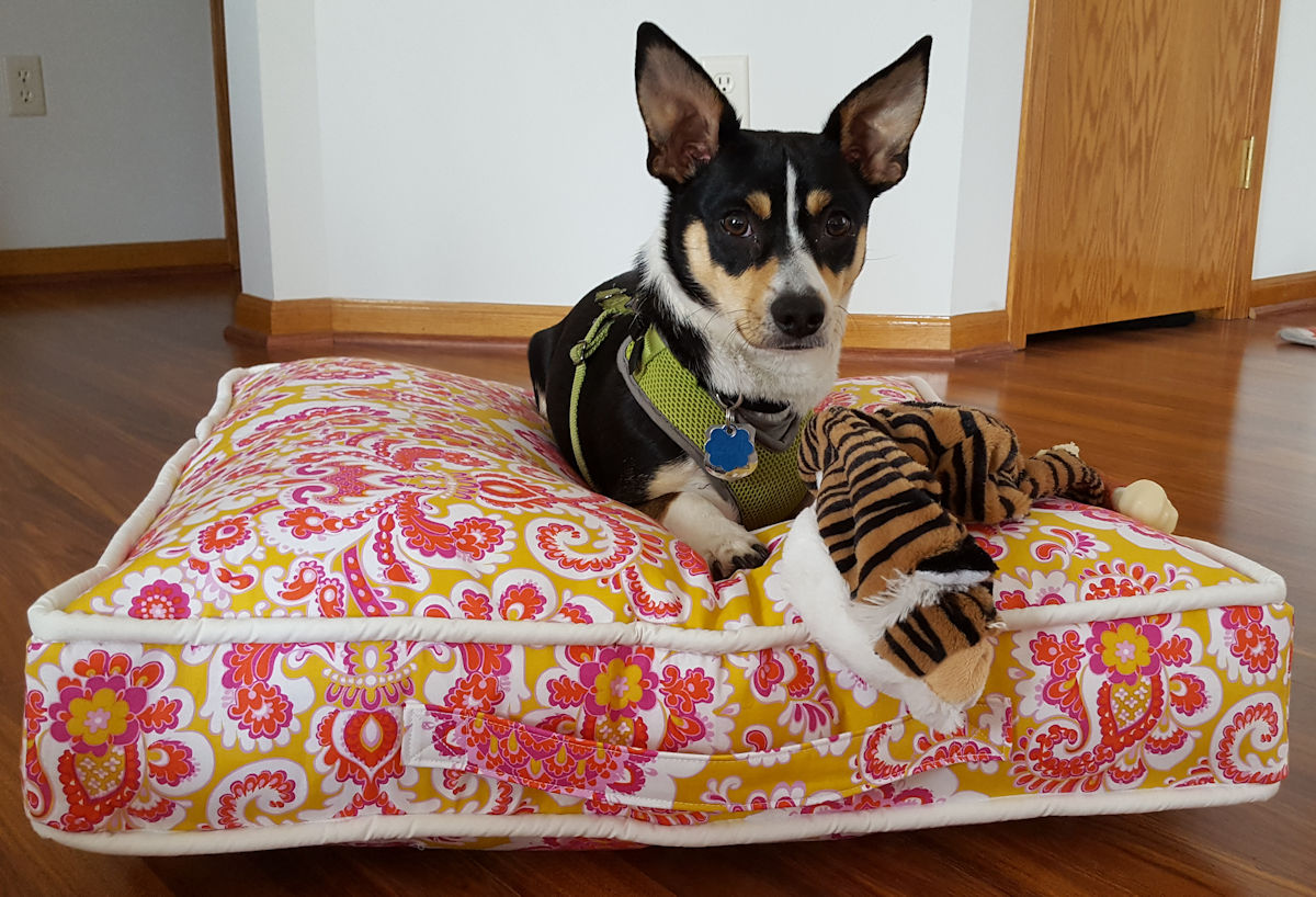 Sewing for Pets: Floor Pillows