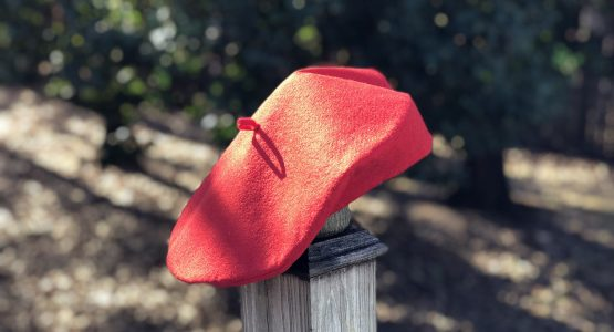https://weallsew.com/wp-content/uploads/sites/4/2018/01/Wool-Felt-Beret-Tutorial-1200-x-800-BERNINA-WeAllSew-Blog-Erica-Bunker-30-555x300.jpg