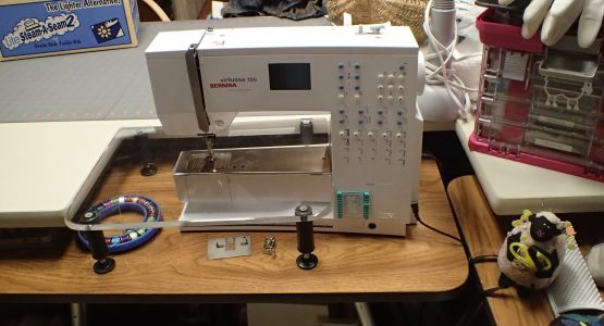 "My First & Still My Favorite Bernina – ""the boat"""
