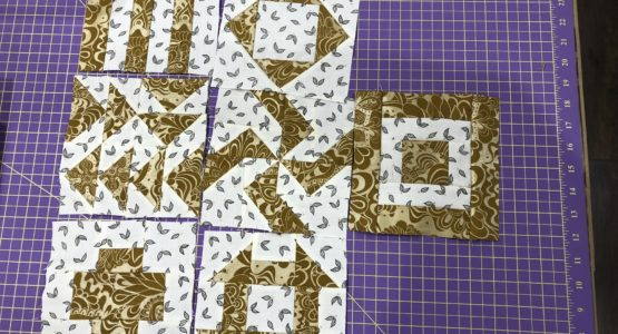 2nd month of 125th Anniversary Quilt