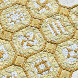 BERNINA 125th Anniversay Quilt-along with Amanda Murphy