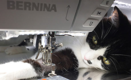 My Favorite Features of the BERNINA 770 QE