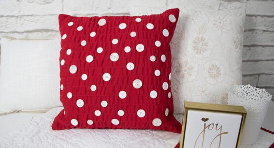 https://weallsew.com/wp-content/uploads/sites/4/2019/01/Red-and-White-Pillow-BERNINA-WeAllSew-Blog-1110x600-555x300.jpg