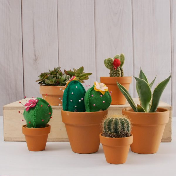 Cactus_Pin_Cushion_tutorial