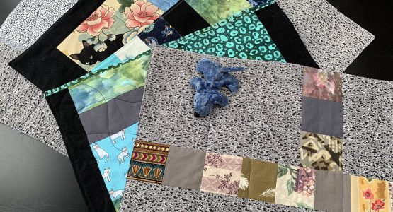 Pet Quilts for the Friends of Feral Felines, Maine