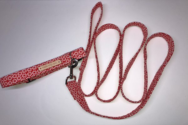 Dog_Collar_Finished_Red_Leash