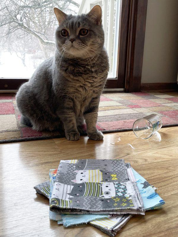Reusable Towels BERNINA Blog: Cat